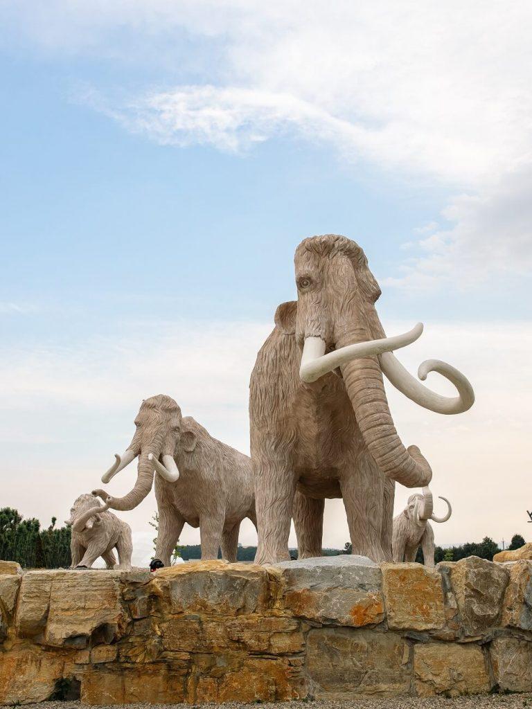 Сім'я мамонтів